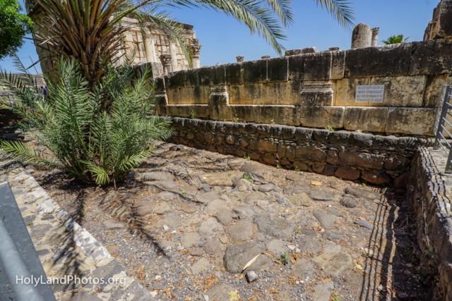 Capernaum Synagogue Foundation