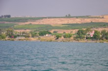 Two Capernaum