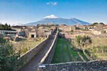 Mount Vesuvius and Gardens
