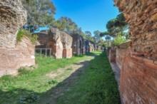 Antoninian Warehouse 4