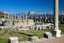 Circular Structure in Forum