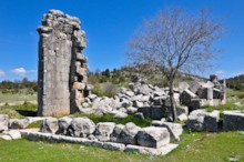 Temple of Trajan Detail 2