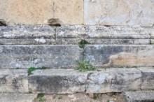 Menorah - Tomb 163d
