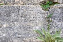 Menorah Detail Tomb 163d