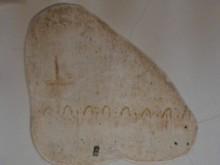Ancient Fresco