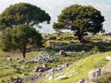 Altar of Zeus 2