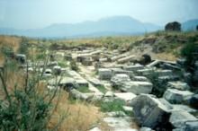 Cardo (unexcavated)